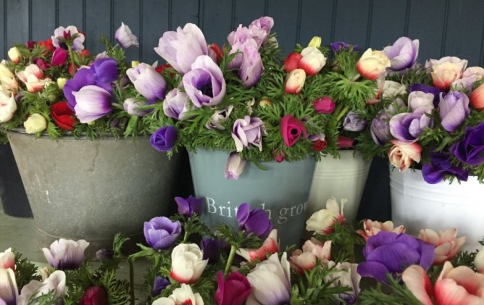 Flourish members receive a discount on flowers